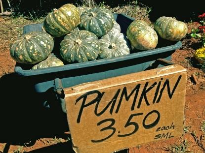 Jap pumpkins for sale at a roadside stall