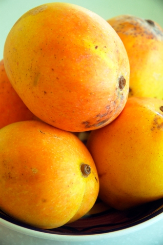 Picture of beautiful kensington pride mangoes